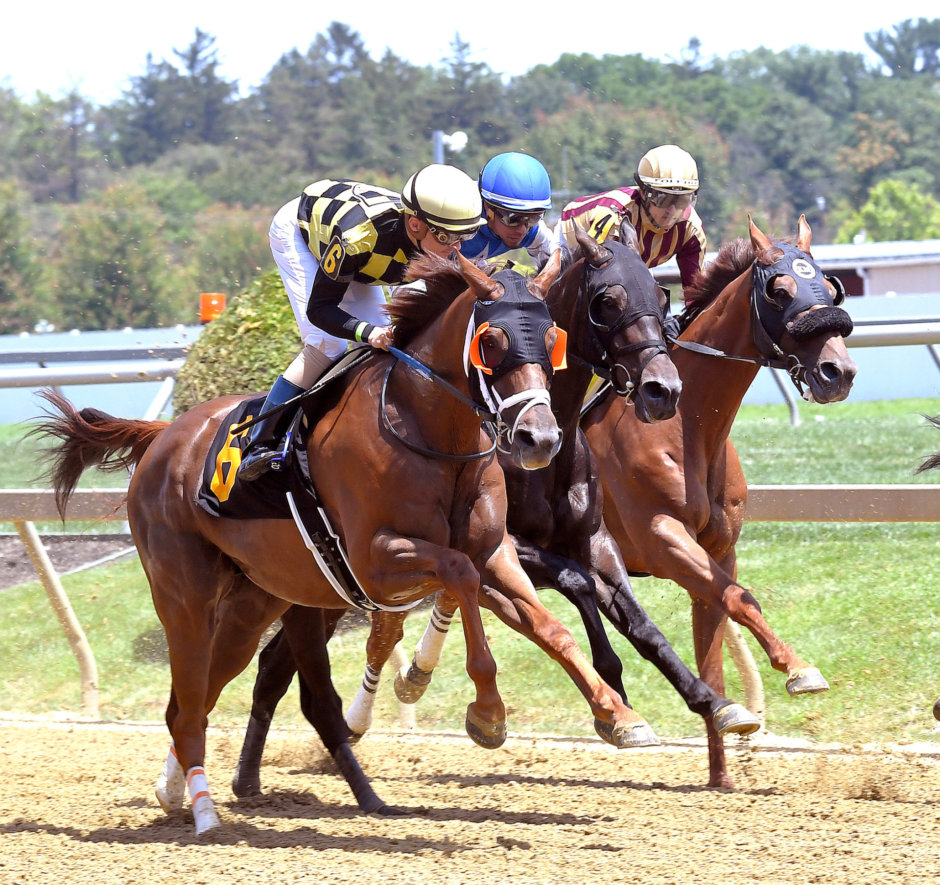 Next round of stakes at Pimlico attracts 67 nominations